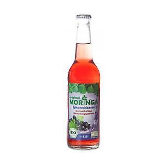 المورينغا ومشروب الكشمش 330 مل