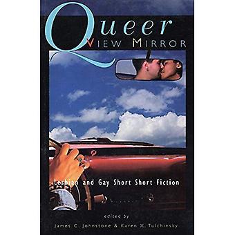 Queer spiegel: Lesbian and Gay korte Short Fiction