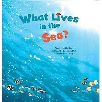 What Lives in the Sea?: Marine Life (Science Storybooks)