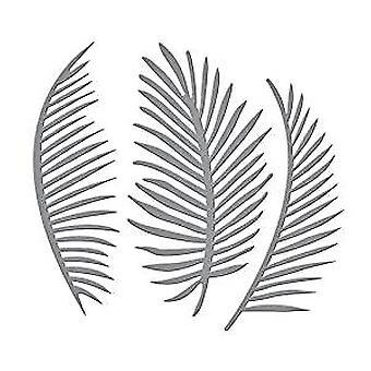 Zauberbinder schneiden stirbt - Palm Fronds Sterben