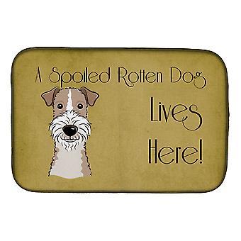 Wire tukka kettu Terrieri pilaantunut koira asuu täällä lautasen kuivaus matto