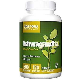 Jarrow Formulas, Ashwagandha, 300 mg, 120 Capsules