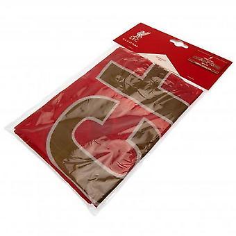 Liverpool FC Premier League Champions Flag