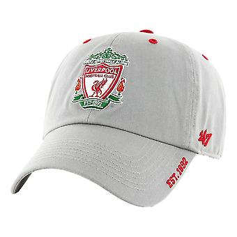 47 EPL Liverpool FC Ice Clean Up Cap - Grey