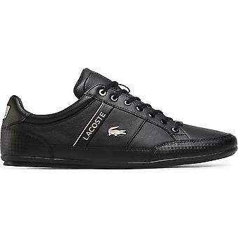 Lacoste Chaymon 741CMA006302H universal all year men shoes