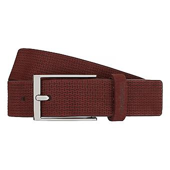 Strellson belts men's belts leather belt Bordeaux 7541
