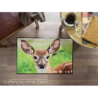 Salon lion mat 50 x 75 cm dirt mat nosy fauve fauve