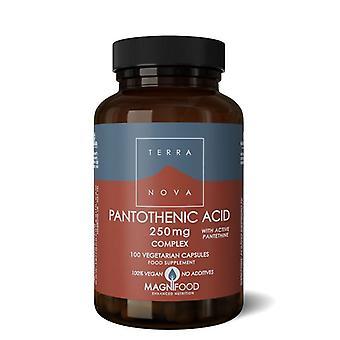 Terranova Pantothenic Acid 250mg Complex Vegicaps 100 (T0295)