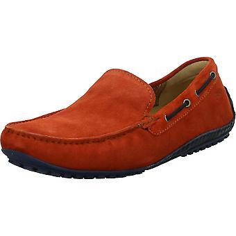 Sioux Callimo 38642 zapatos universales para hombre