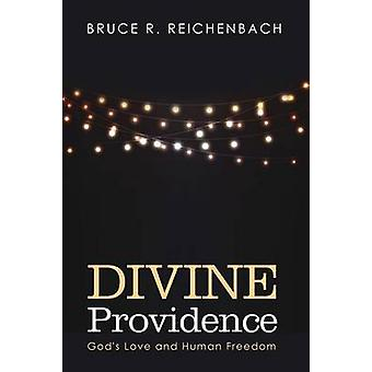 Divine Providence by Bruce R Reichenbach - 9781498292856 Book