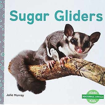 Sugar Gliders by Julie Murray - 9781532104077 Book