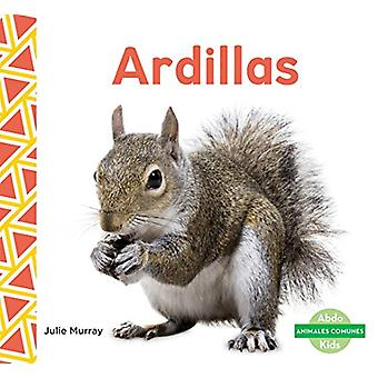 Ardillas (Squirrels) by Julie Murray - 9781624026065 Book