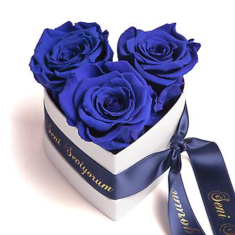 Seni Seviyorum Roses Heart Box 3 Eternal Roses in Beige Durable 3 Years
