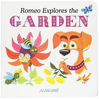 Romeo Explores the Garden by Alain Gree - 9781787080140 Book