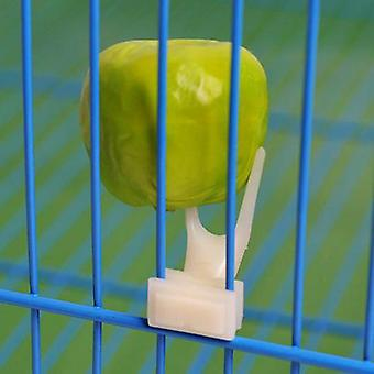 Birds Parrot Fruit Fork Pet Supplies -plastic Food Holder