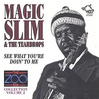 Magic Slim & Teardrops - Magic Slim & Teardrops: Vol. 2-Zoo Bar samling Vol 2 [CD] USA import