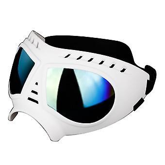 1paar Hund Uv Sonnenbrille Wasserdicht Winddichte Brille Brillenschutz Sonnenbrille Haustierbedarf