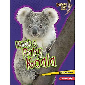 Satisfacer un Koala bebé (relámpago perno libros bebé animales australianos)