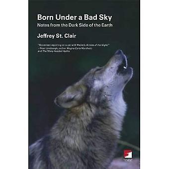 Born Under a Bad Sky