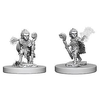 Conquistador Batallas Profundos Cortes Sin Pintar Miniaturas Gnomo Druida Macho (Pack de 6)