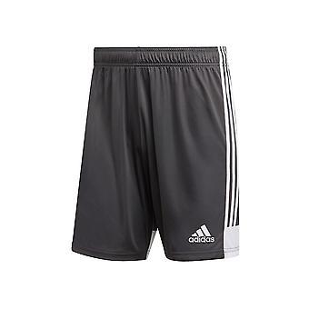 Adidas Tastigo 19 DP3255 futbal letné Pánske nohavice