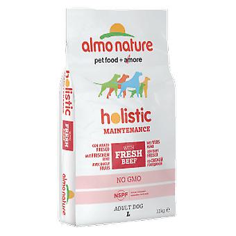 Almo nature Holistic Large Lamb (Dogs , Dog Food , Dry Food)
