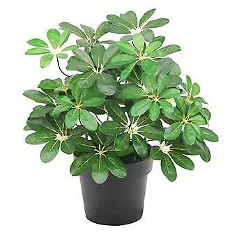 55cm dunkel grünen künstliche Schefflera Arboricola Pflanze