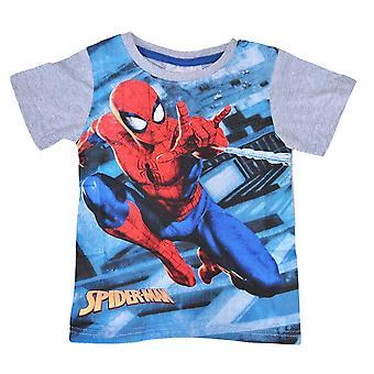 T-shirt Spiderman , Grå, 6 år