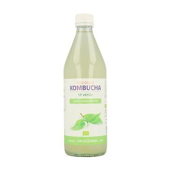 Green Tea Kombucha 500 ml