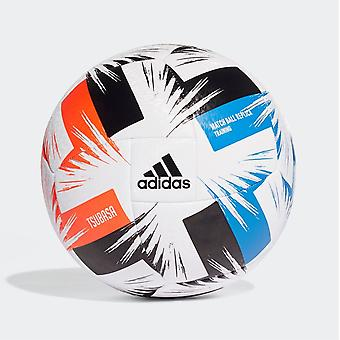 أداسداس تسوباسا التدريب لكرة القدم