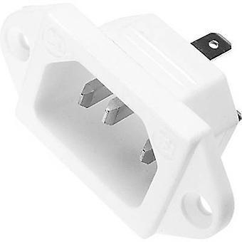 Kaiser 781/ws IEC connector 781 Series (mains connectors) 781 Plug, vertical mount Total number of pins: 2 + PE 10 A White 1 pc(s)