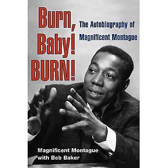 Burn, Baby! SPALIĆ!: autobiografia wspaniały Montague (muzyki w amerykańskim życiu)