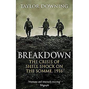 Verdeling: De Crisis van Shell Shock op de Somme