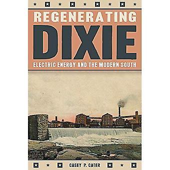 Het regenereren Dixie: elektrische energie en het moderne zuiden (geschiedenis van het stedelijke milieu)
