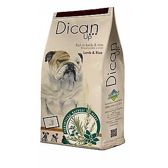 Dican upp lamm y ris för hundar (hundar, hundmat, torka mat)