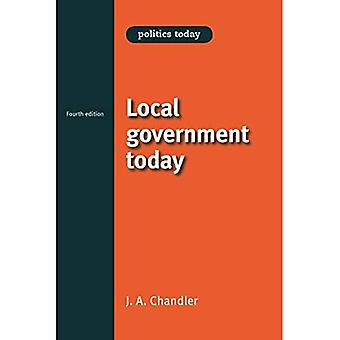 Local government today (Politics Today)