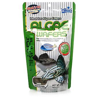 Hikari Tropical Algae Wafers Complete and Balanced Fish Food