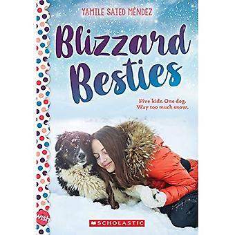 Blizzard-Friends: Ein Wunsch Roman (Wunsch)