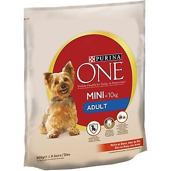 Pro Plan Pienso Mini Dog Adult Buey y Arroz (Dogs , Dog Food , Dry Food)