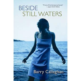 Beside Still Waters by Barry Callaghan - 9781552787908 Book