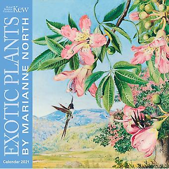 Kew Gardens  Exotic Plants by Marianne North Wall Calendar 2021 Art Calendar by Created by Flame Tree Studio