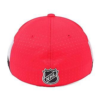 Οτάβα γερουσιαστές NHL