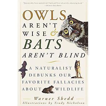 Ugglor är inte kloka & fladdermöss är inte Blind: En Naturalist Debunks vår favorit vanföreställningar om djurlivet