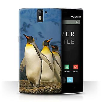 STUFF4 Case/Cover for OnePlus One/King Penguins/Arctic Animals