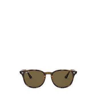راي بان RB4259 ضوء هافانا النظارات الشمسية للجنسين