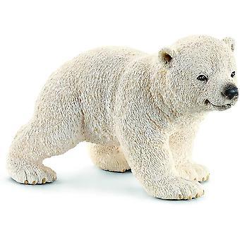 Polar Bear Walking Cub