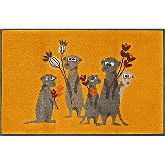 Lavage de tapis 50 x 75 cm Meerkat Pepe, Bo, Paco & co + tapis de saleté