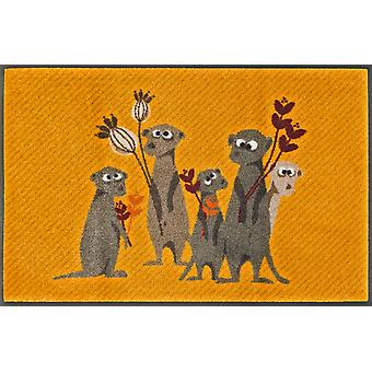 Meerkat Pepe, Bo, Paco i co pranie mat 50 x 75 cm + Mata sucha brud