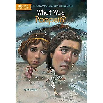 Ce qui a été Pompéi?