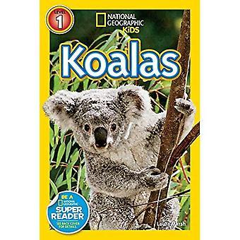 Koalas (National Geographic Kids: Stufe 1)